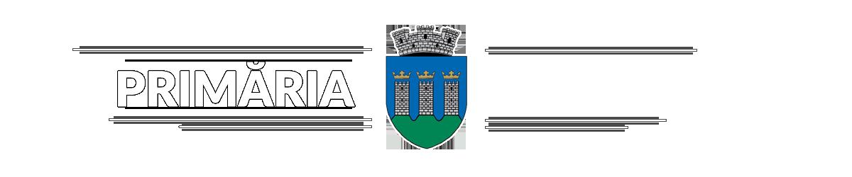 Primaria orasului Rupea