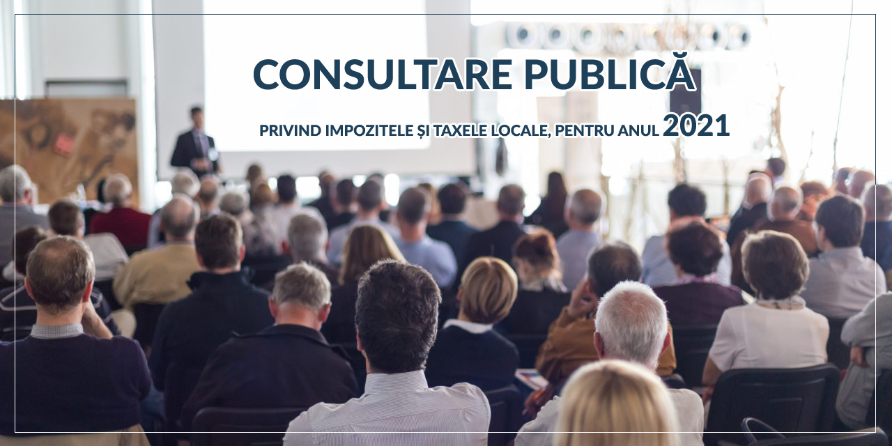 Consultare Publica Rupea
